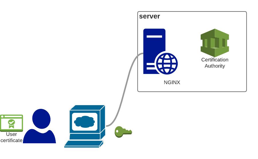Nginx Client Certificate Authentication